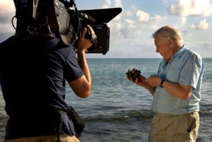 David Attenborough It's a Wonderful World